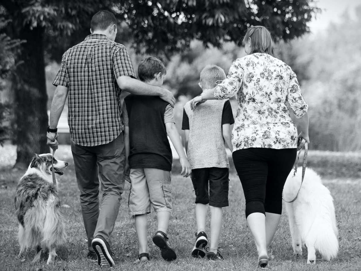 Dad and Mom walking with two sons and two dogs